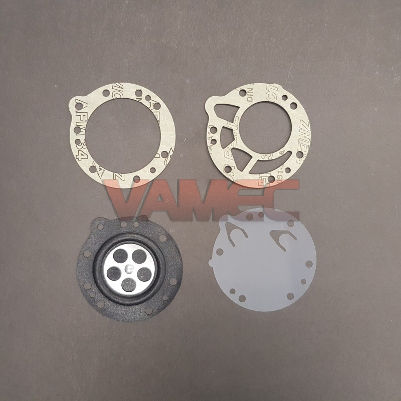 Diaphragm and gasket kit SPECIAL